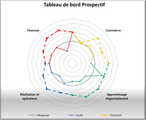 CODEAF Toulouse Audit rentabilité préconisations Tableau de Bord Prospectif